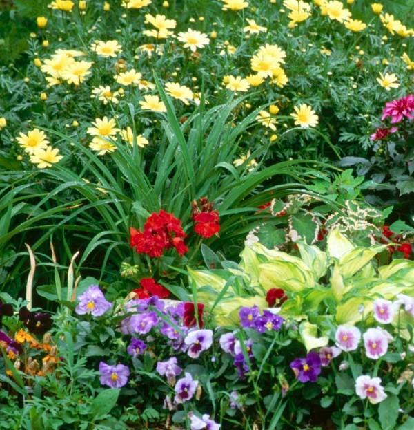 460692-flower-gardens